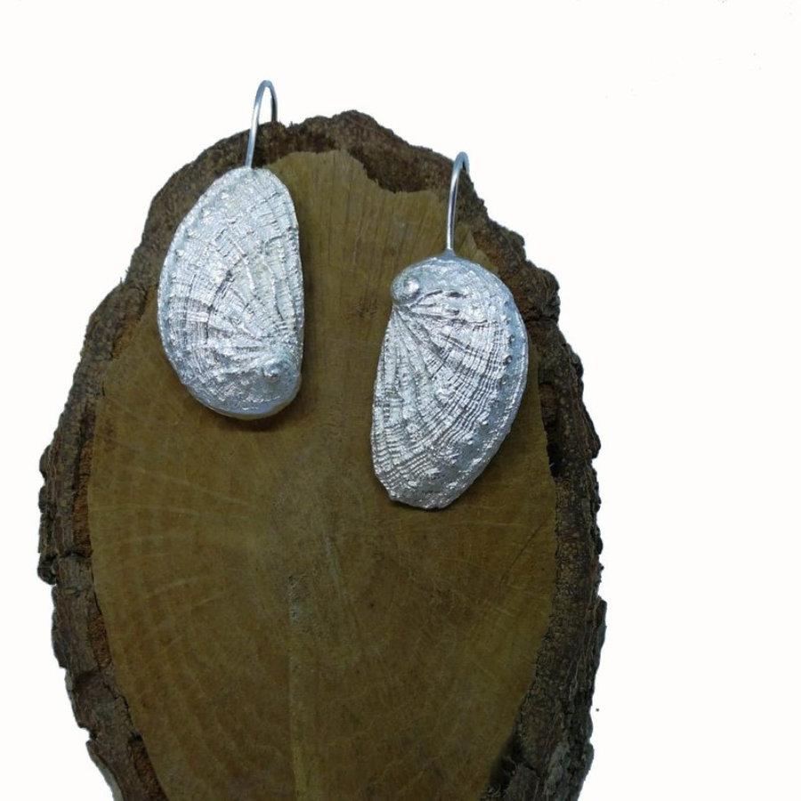 Haliotis silver earrings